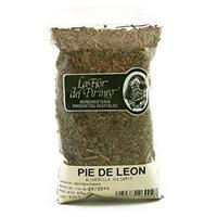 Pie de León