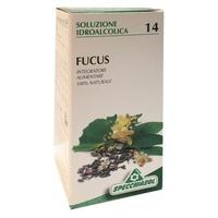 Fucus TM 14