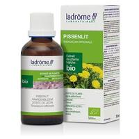 Bio Dandelion Extract