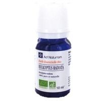 Ätherisches Öl Eucalyptus radiata