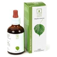 TM Organic Bearberry