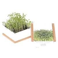 Watercress-Grow Box Uno