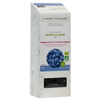 Blueberry berry organic fruit