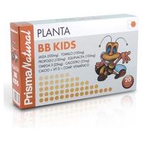 Planta Bb Kids