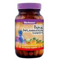 Pain & Inflammation Support