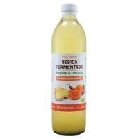 Bebida fermentada jengibre y cúrcuma
