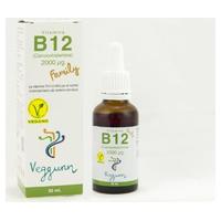 Vitamina B12 Family
