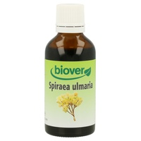 Spiraea Ulmaria (Rainha-dos-Prados)