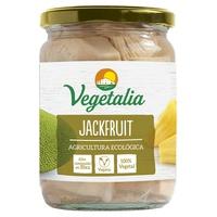 Organiczny Jackfruit