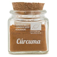 Poudre de curcuma biologique