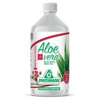 Jugo de Aloe vera y Arándano
