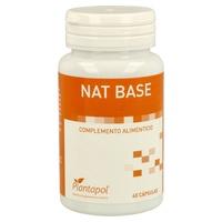 Nat Base