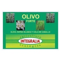 Olive Forte Eco