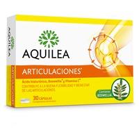 Aquilea Joints