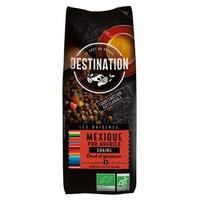 Chicchi di caffè arabica biologici al 100%