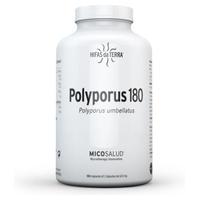 Polyporus 180