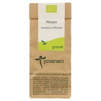 Hisopo