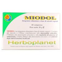 Miodol