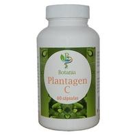 Plantagen C (Cúrcuma)
