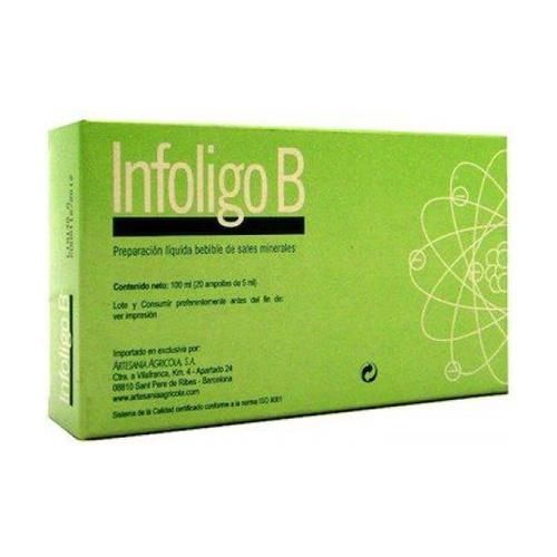 Infoligo B