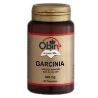 Garcinia Cambogia (Dry Ext.)
