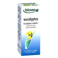 Eucalyptus Globulus Aceite Esencial Bio