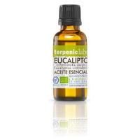 Essential Oil of Eucalyptus Citriodora Bio