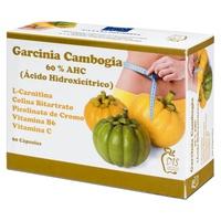 Garcinia Camboya