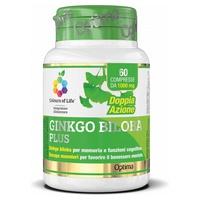 Ginkgo Biloba Plus