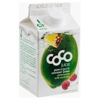Agua Coco Drink Piña Acero Bio