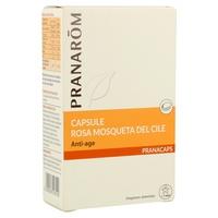 Rosa Mosqueta de Chile (Anti-envejecimiento)