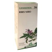 Gemmosol 36 Black Currant