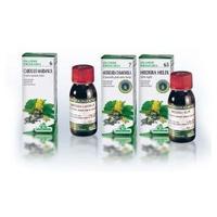 Artemisia Vulgaris Tm 02 Agbio