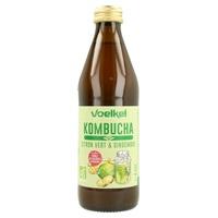 Kombucha Lima y Jengibre Bio