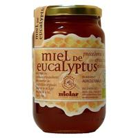Miel de Eucalipto Bio