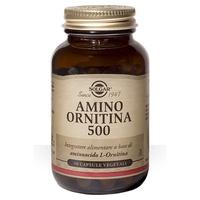 Amino ornithine 500