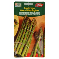 Graines d'asperges Mary Washinton