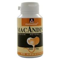 Maca Andina 60 cápsulas de 610 mg de Fharmocat