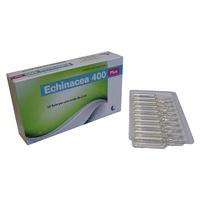 Echinacea 400 plus