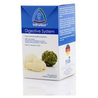 Sistema Digestivo (Digestive System)
