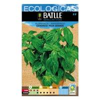 Basil Genovese Large Leaf Seeds