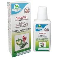 Champú Seda Seco con Aloe Vera