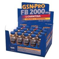 GSN-Pro FB 2000