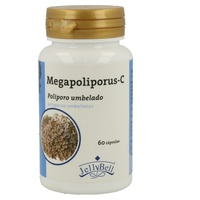 Megapoliporus-C