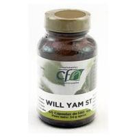 Wild Yam St