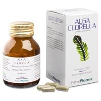 Wodorosty chlorelli