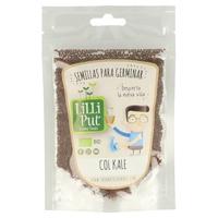 Semillas de Col Kale para Germinar Ecológicas