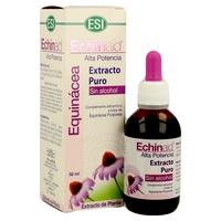Echinaid extracto puro sin alcohol de equinácea