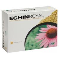 Echin Royal