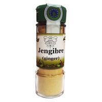 Condimento Jengibre en polvo